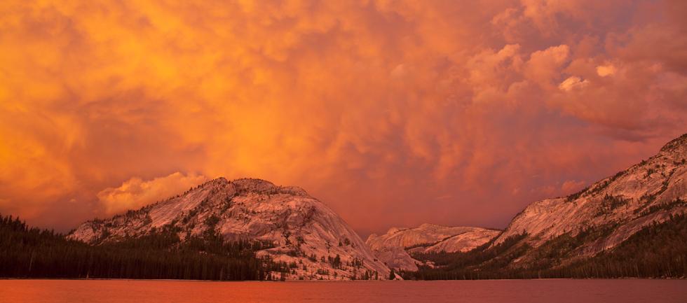 Icons of Yosemite Photo Classes