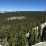 Lembert Dome: Yosemite Panorama Photo 2015.07.06